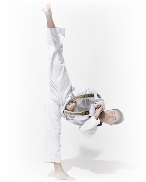 master seo golden dragon taekwondo